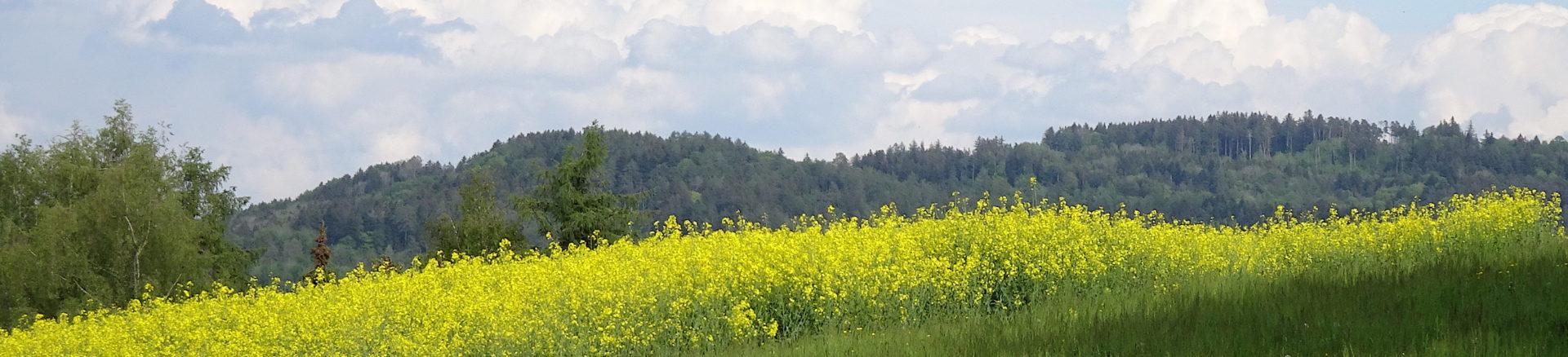 Natur- und Vogelschutzverein Aadorf